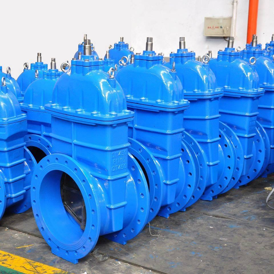 Best Quality Gate Valve Manufacturer in Italy